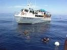 Boats & Crews